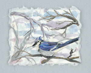 Winter Jay, Paper Montage by Galen Snow